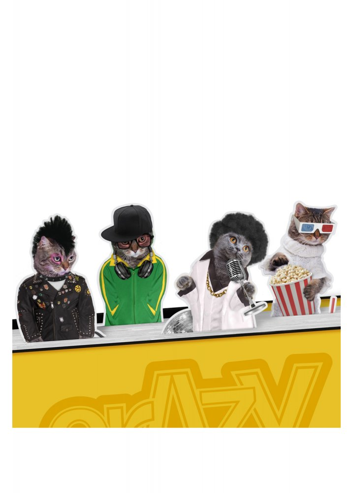 Image of Crazy Cats Magnetic Bookmarks - Colour: Multi