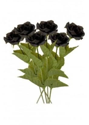 6 Black Roses