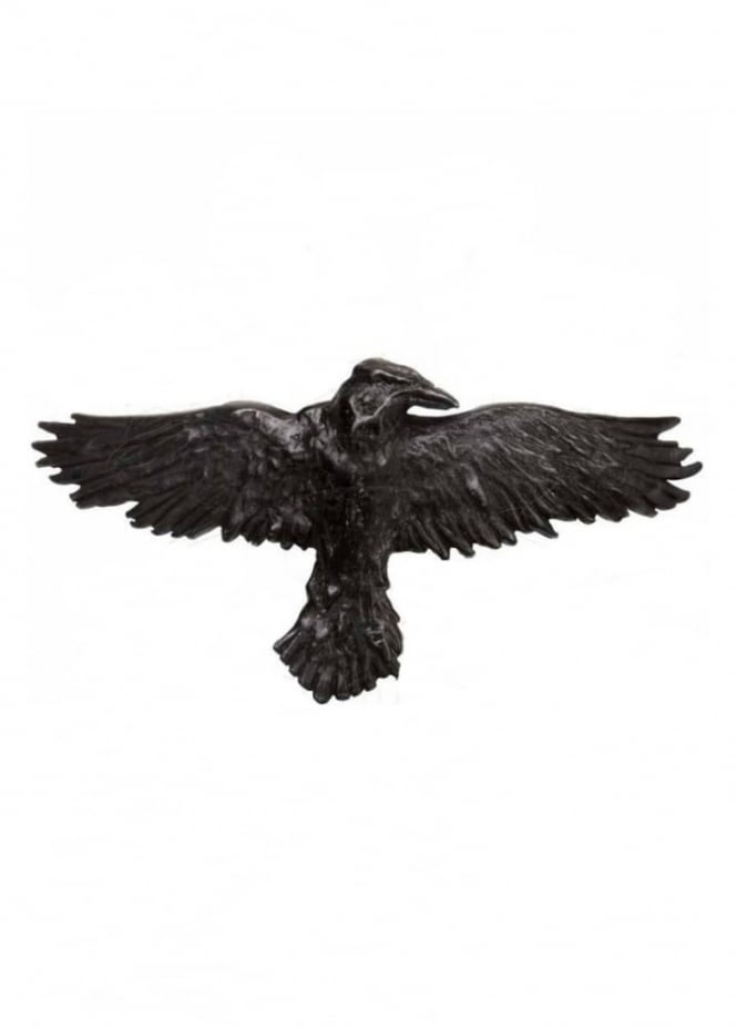Alchemy Gothic Black Raven Hair Slide