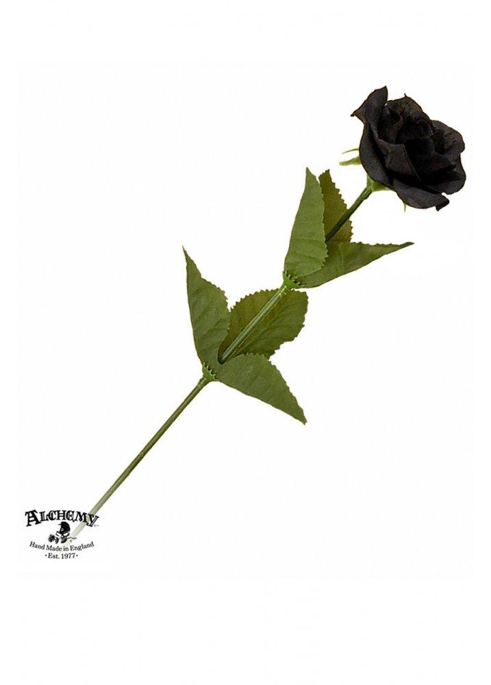 rose hill black singles 6138 rose hill drive rose hill, va 22310 black lentils namaste thali special (only dianning.