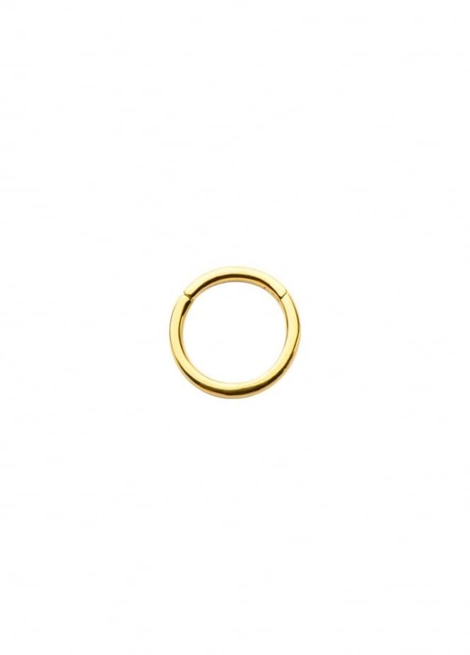 Body Vibe Hinged Segment Ring 10mm