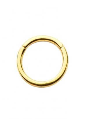Hinged Segment Ring 10mm