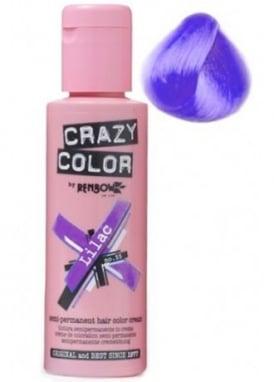 Lilac Hair Colour
