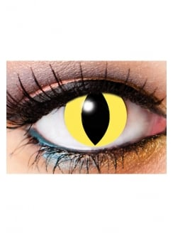 One Day Cat Eye Cosmetic Lenses